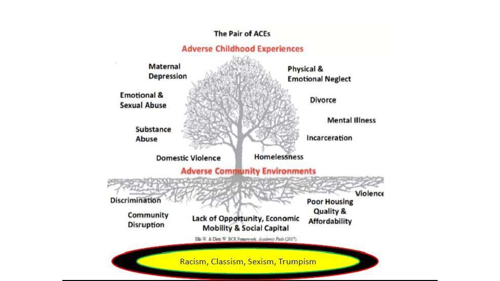 Chapman Info on Ward 7 & 8 _Webinar_Covid 19 Drugs and Mental Health2_07232020_Page_22