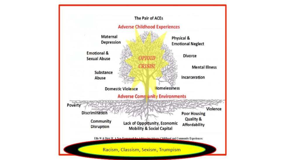 Chapman Info on Ward 7 & 8 _Webinar_Covid 19 Drugs and Mental Health2_07232020_Page_23